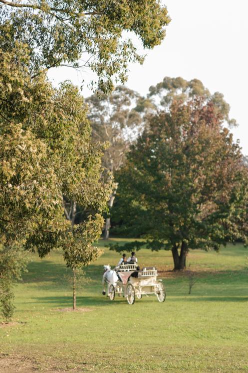 TheSaltStudio_SydneyWeddingPhotography_SydneyWeddingPhotographer_SydneyWeddingVideography_AnsleyJason_25.jpg